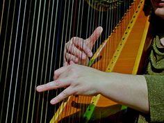 Anna Maria E. Albors, arpa Concerts, Holding Hands