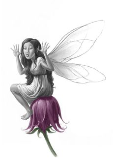 Fablehaven fairy, she's forwards the back of the third book!
