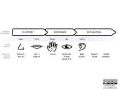 Discovery - Experience - Exploration. How the senses are engaged  #Transmedia #Storytelling #Model