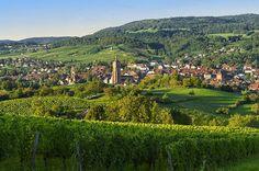 Arbois - Région Franche-Comté / Bourgogne - Le village préféré des français - France 2