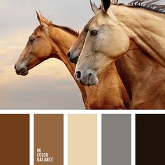 67 Ideas for wood color palette ideas brown Beige Color Palette, Room Color Schemes, Color Balance, Design Seeds, Colour Board, Corporate Design, Wood Colors, Color Inspiration, Inspiration Boards