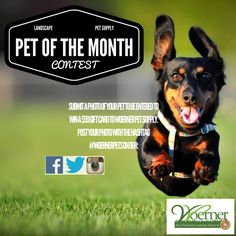 Enter the #Woerner #Landscape & #Pet Supply Pet of the Month #contest by posting your pets photo with the #WoenerPets!