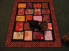Baby Quilt with Nessa and Shade