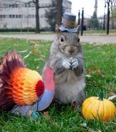 Sneezy the Penn State Squirrel (Facebook.com/SneezySquirrel)