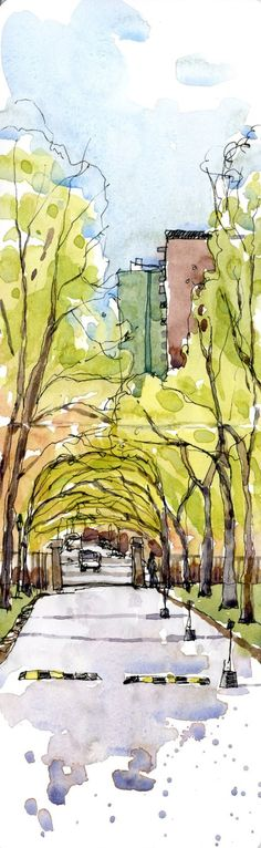 Shari Blaukopf trees + watercolor + dark lines = i am all about this Watercolor Sketch, Watercolor Landscape, Watercolour Painting, Painting & Drawing, Watercolors, Landscape Sketch, Watercolor Trees, City Landscape, Landscape Architecture