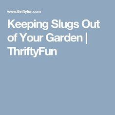 Keeping Slugs Out of Your Garden | ThriftyFun