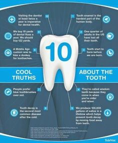 10 cool truths about the tooth. - John S. Bazos, D.M.D., P.A. | #CoralSprings | #FL | www.kids2thdmd.com