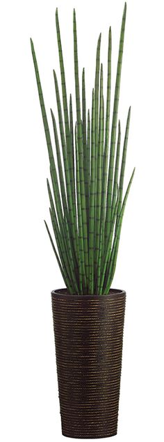 Love this! This site has tons of great artificial plants at low prices. Snake Grass in Bamboo Container 84in  www.save-on-crafts.com