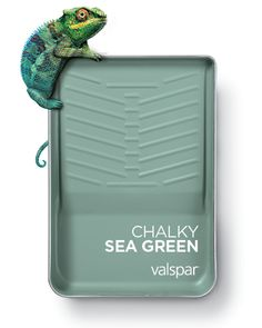 One of 12 Valspar 2019 Colors of the Year: Chalky Sea Green Available as: Green Water at Lowe's Zinc Blue at Ace Zinc Blue at independent retailers