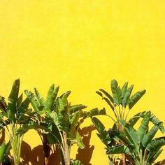 ᘡℓvᘠ □☆□ ❉ღ happily // ✧彡●⊱❊⊰✦❁❀‿ ❀ ·✳︎· MON APRIL 10 2017 ✨ ✤ॐ ✧⚜✧ ❦♥⭐ ♢∘❃ ♦♡❊ нανє α ηι¢є ∂αу ❊ღ༺✿༻✨♥♫ ~*~ ♆❤ ☾♪♕✫❁✦⊱❊⊰●彡✦❁↠ ஜℓvஜ .