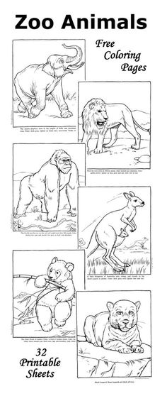 Zoo coloring pages - Fun facts with each zoo animal picture.