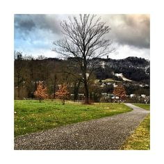 Wir sind in der Mitte der Woche angekommen!  #lebeninadliswil #livinginadliswil #adliswil #stadtadliswil #sihltal #lebenimsihltal #zürich… Country Roads, Instagram, Life