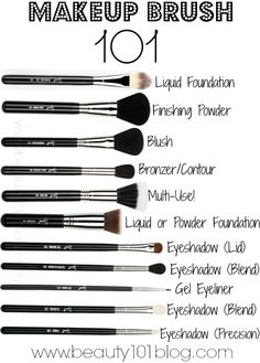Makeup Brush 101 - Beauty 101 Like this.