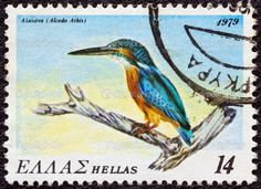 http://st.depositphotos.com/1610717/1226/i/950/depositphotos_12263546-GREECE---CIRCA-1979-A-stamp-printed-in-Greece-from-the-quotendangered-bird-speciesquot-issue-shows-a-Common-Kingfisher-Alcedo-athis-circa-1979..jpg