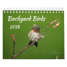 Backyard Birds 2018 Calendar - home gifts ideas decor special unique custom individual customized individualized