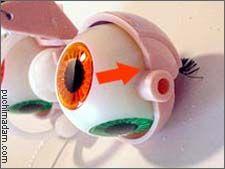 Boggled Eyelids  at  Puchi Collective