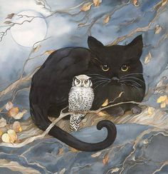 The Owl and the Pussycat best freinds black cat white owl signed giclee I Love Cats, Crazy Cats, Cute Cats, Graffiti Kunst, The Pussycat, Owl Art, Cat Drawing, Cats And Kittens, Fantasy Art