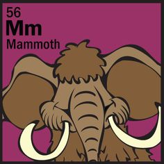 The Animal Table Wild Thing of the Week is the Mammoth