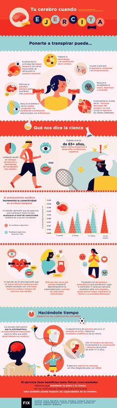 Todos los beneficios del ejercicio fisico en el cerebro - Increible infografia   http://ViviSaludable.com