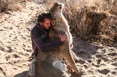 Photographs capture incredible bond between conservationists and lioness