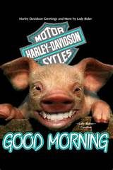 Motorcycle Good Morning - Yahoo Image Search Results