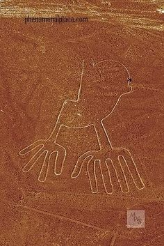 Ancient Nazca lines/Peru. The Owl, I want to fly and see the Nazca lines so bad! Ancient Mysteries, Ancient Ruins, Ancient Artifacts, Ancient History, Nazca Lines Peru, Nazca Peru, Machu Picchu, Land Art, Art Et Nature