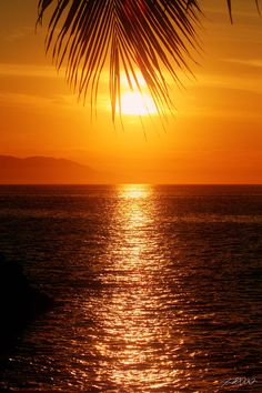 ✯ Puerto Vallarta, Mexico Sunset One of my favorite places!