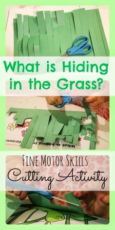 What is Hiding in the Grass? Cutting Activity-awesome cutting idea- the kid cuts off the grass strips so he can see what is hiding underneath