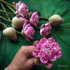 ชีวิตคือกาเรียนรู้ และหลายอย่างก็สอนเราเอง เพียงแค่เราต้องมีสติและสมาธิเราก็จะตั้งใจทำสิ่งนั้นมาได้สำเร็จ#พับดอกบัว