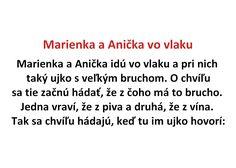 Marienka a Anička vo vlaku - Spišiakoviny.eu