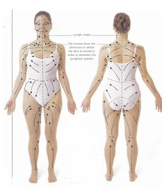 Lymph drainage pattern for skin brushing- detox, drop weight, and cure cellulite naturally. I am a new fan to skin brushing. Even if it doesn't do all those things above, my skin looks and feels great and I enjoy the mini-massage every day. Fitness Workouts, Health And Nutrition, Health And Wellness, Dry Brushing Skin, Dry Skin, Dry Brushing Benefits, Smooth Skin, Lymphatic System, Health And Beauty Tips