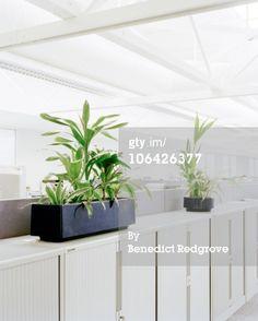add shelf outside cube for plants