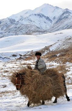 Village people: A man carries hay for the winter in the mountains near Tash-Bashat village, Naryn Province, Kyrgyzstan. Photo by: Vyacheslav Oseledko We Are The World, People Around The World, Wonders Of The World, Around The Worlds, Beautiful Horses, Animals Beautiful, Beautiful Sites, Expo Milano 2015, Animal Tracks