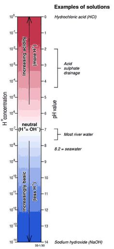 pH scale and H+ concentrations