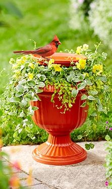 water dish for birds, in a pedestal planter, with plants