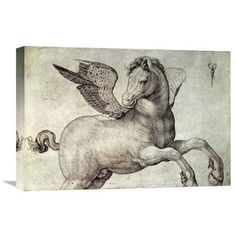 Global Gallery 'Pegasus' by Jacopo de Barbari Painting Print on Wrapped Canvas Size: