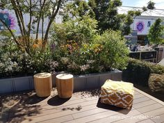 Kate Gould, Keith Chapman, and the City Living Garden - Pumpkin Beth Garden Furniture, Outdoor Furniture Sets, Outdoor Decor, Chelsea Flower Show, City Living, Pumpkin, Flowers, Design, Outdoor Garden Furniture