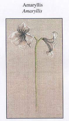 fleur et tige