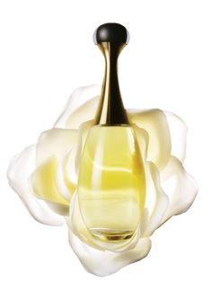 My Psp Tubes: Perfume Bottles