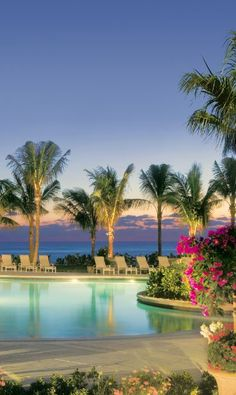 Hotels with ALL the amenities !! I wanna go there for a few days off. Nothing like a #Florida sunset.