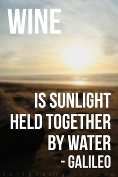 Wine is sunlight held theldtogether by Galileo Wine Meme, Wine Funnies, Wine Wednesday, In Vino Veritas, Wine And Spirits, Wine Drinks, Wine Country, Wine Tasting, Funny Quotes