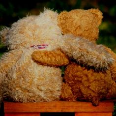 My bears, again...