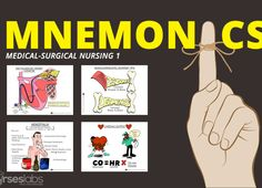 Helpful nursing mnemonics and tips to get you through nursing school! Check out these collection of the best memory aids for nursing students! Nursing Assessment, Nursing Mnemonics, Nursing School Tips, Nursing Tips, Lpn Schools, Medical Surgical Nursing, Student Info, Becoming A Nurse, Nurse Quotes