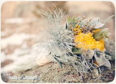 gray and yellow bridal bouquet - love the frosty feel of this flowers for the Winter Bride