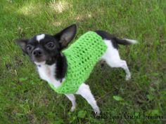 XXS any occasion dog sweater « The Yarn Box The Yarn Box