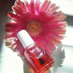 💅You could do with some cuticle love & nail care with Essie Apricot Oil Quick Beauty Review up on the blog. Link in bio . . . . . #beauty #nailbeauty #essie #beautyreview #manicure #beautyblog #cosemetic #wednesdayvibes #chimocollate #essieapricotcuticleoil #instadaily #flowerporn #daisy #cuticlecare #cuticles #instadaily #nails #nailpolish #nailcare #beautyphotography #wednesday #pink #prettyinpink #instagood #beautyblogger #makeup