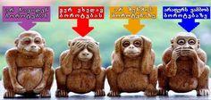 მეოთხე მაიმუნის საიდუმლო