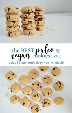 this is exactly the recipe you've been missing in your life // made of simple, nutritious ingredients, these cookies are beyond delicious and an indulgence you can feel good about // paleo cookies // vegan cookies // grain free, dairy free, gluten free, refined sugar free // 5 gras of protein and just 6 grams of sugar per cookies