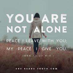 You Are Not Alone. Another great daily devotional for the She Reads Truth read…