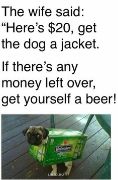 """40 Dumb & Humorous Memes Fresh Off The Press - Funny memes that """"GET IT"""" and want you to too. Get the latest funniest memes and keep up what is going on in the meme-o-sphere. Funny Dogs, Funny Animals, Happy Quotes, Funny Quotes, Hilarious Sayings, Humor Quotes, Dog Quotes, Animal Quotes, Funny Names"""